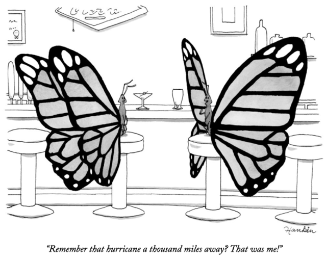 Figure 9: Butterfly effect https://charliehankin.com